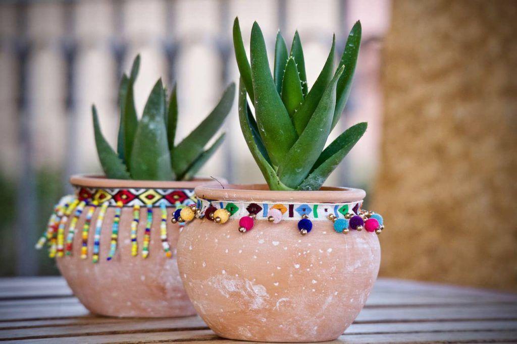 Decoración de restaurantes mexicanos con plantas