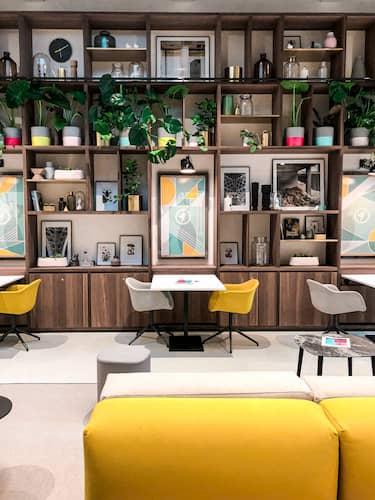 Consejos para decorar un restaurante con plantas
